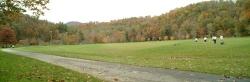 ASU playing fields